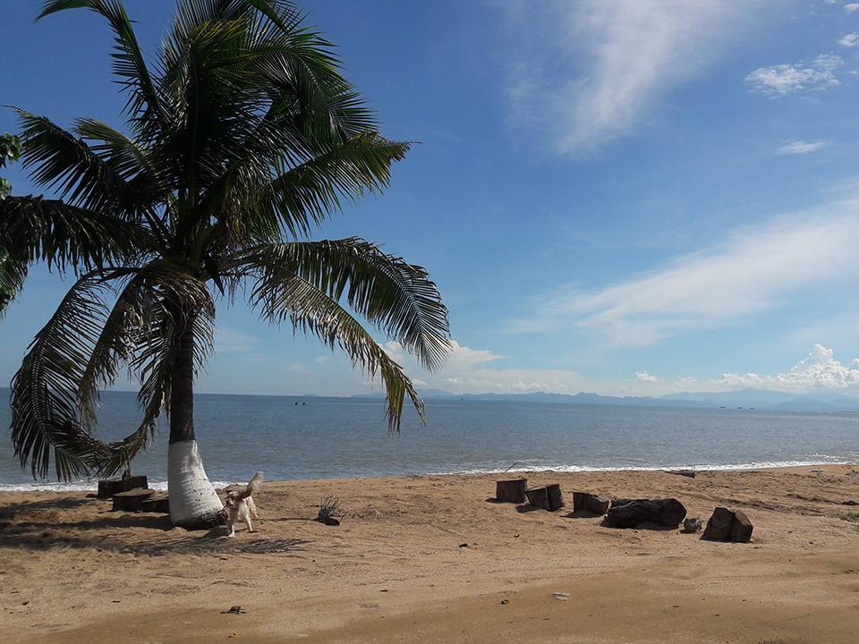 Küste nach Panama City und Reparaturen | Theworldonabus